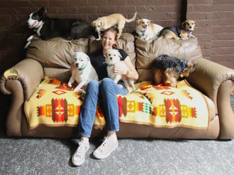 http://urbandog.com/wp-content/uploads/2017/04/Special-Needs-Dog-800x600.jpg
